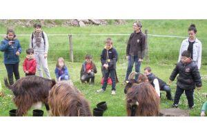 les enfants ont approche les animaux a la ferme de l abrepin rene gauthey300